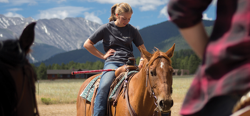 Astrid - HS16 horse