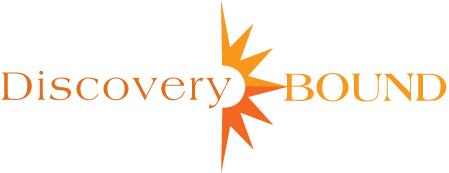 DB Logo 2tone Orange